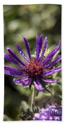 Dewy Purple Fleabane Bath Towel