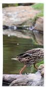 Diary Of A Mad Brown Duck Hand Towel