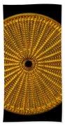 Diatom Alga, Arachnoidiscus Bath Towel