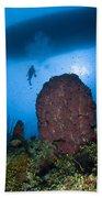 Diver And Barrel Sponge, Belize Bath Towel
