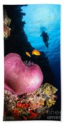 Diver And Magnificent Anemone, Fiji Bath Towel