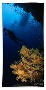 Diver And Soft Coral, Fiji Bath Towel