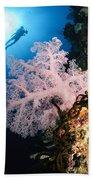 Diver Over Soft Coral Seascape Bath Towel