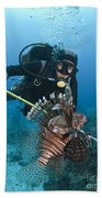 Diver Spears An Invasive Indo-pacific Bath Towel