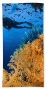Diver Swimms Above Soft Coral, Fiji Bath Towel