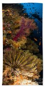 Diver Swims By Soft Corals And Crinoid Bath Towel
