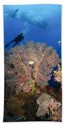 Diver Swims Over Sea Fans, Indonesia Bath Towel