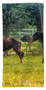 Domestic Horses Bath Towel