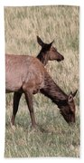 Double Vision Hand Towel