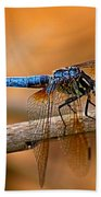 Dragon Fly Bath Towel