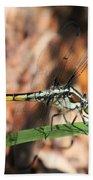 Dragonfly Closeup Bath Towel