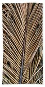 Dried Palm Fronds Bath Towel