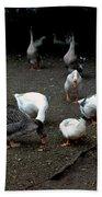 Duck Duck Goose Bath Towel
