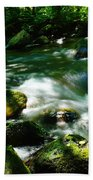 Eagle Creek  Bath Towel