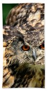 Eagle Owl Bath Towel