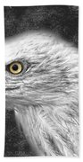 Eagle Two Bath Towel