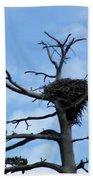 Eagles Nest Bath Towel