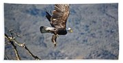 Eagle's Wings Hand Towel