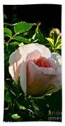 Early Rose Bath Towel