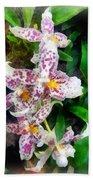 Elegant Beallara Orchid Bath Towel