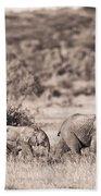 Elephants Walking In A Row Samburu Kenya Bath Towel
