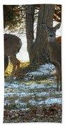 Eleven Deer Standing Bath Towel