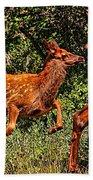 Elk Fawn Bath Towel