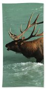 Elk In The Athabasca River Bath Towel