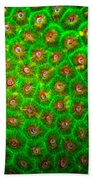 Emerald Coral Bath Towel
