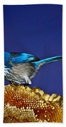 Evening Visitor Hand Towel
