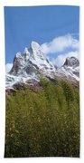 Expedition Everest Bath Towel