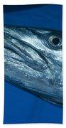 Facial View Of A Great Barracuda, Kimbe Bath Towel