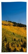fall in Ruidoso Bath Towel