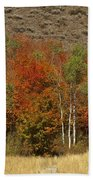 Fall In Snake River Canyon Bath Towel