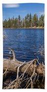 Fall Logs On Reflection Lake Bath Towel