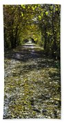 Fall On Macomb Orchard Trail Bath Towel
