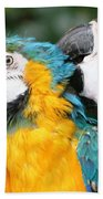 Feathered Friends  Bath Towel