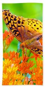 Feeding Butterfly Bath Towel