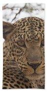 Female Leopard Close-up Bath Towel