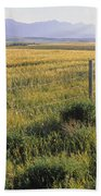 Fence And Barley Crop, Near Waterton Bath Towel
