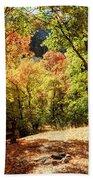 Fenced Path Through Autumn Forest - Blacksmith Fork Canyon - Utah Bath Towel