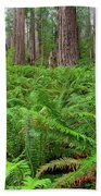 Ferns And Redwoods Bath Towel