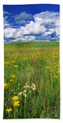 Field Of Flowers, Grasslands National Bath Towel
