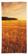 Field Of Grain Stubble Near St Bath Towel