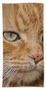 Fierce Warrior Kitty Bath Towel