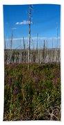 Fireweed  Epilobium Angustifolium Glacier National Park Usa -2 Bath Towel