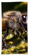 First Bee For The Summer Bath Towel