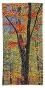 Flaming Fall Foliage Bath Towel