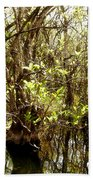 Florida Everglades 9 Bath Towel