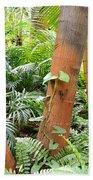 Florida Palms And Ferns Bath Towel
